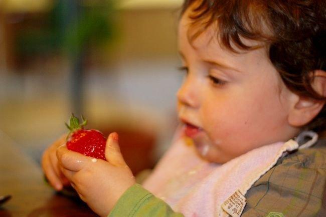 No come fruta ni verdura. ¿Que hago?